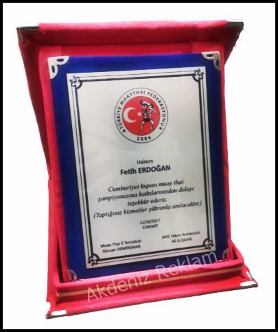 muay thai federasyonu